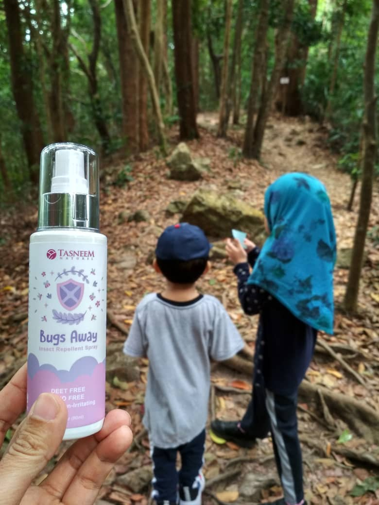 Bugs Away ; Insect Repellent